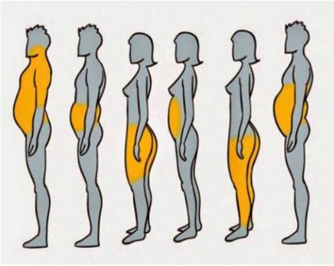 cuerpos diferentes, celulitis, abdomen, tonificar, crema antoicelulítica
